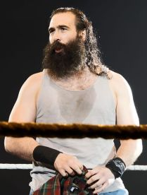 Luke_Harper_April_2015