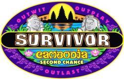 Survivor31Logo